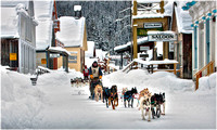 Winter Activity and Dog Sleds